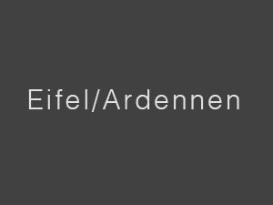 Fotografien - Kategorie - Eifel/Ardennen - Anfang - Hohes Venn - Baum - Eichenbaum - Landschaft