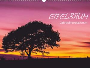 Eifelbaum - Jahresimpressionen (Wandkalender 2016 DIN A4 quer)